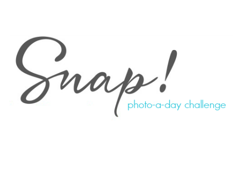 Snap Photo-a-Day Challenge May