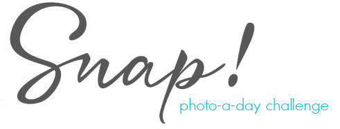 Snap 2015 Photo-a-Day Challenge
